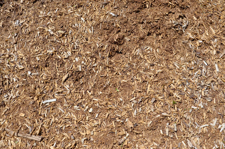 bark mulch: A bark mulch background