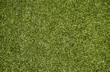 turf: Texture of artificial turf