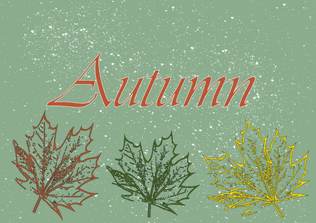 autmn: Maple leaves and the word autmn