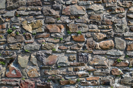 Natural stone wall with little green plants