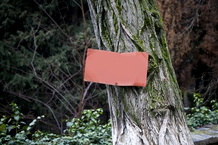 a rusty red signboard on an old-timer tree