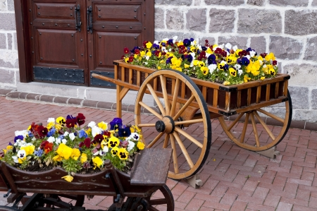 Wooden cart inside the flowers in capital ankara turkey Stock Photo