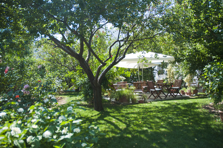 Green Garden  and Some wooden garden table very nice view in the nature Bodrum,Turkey