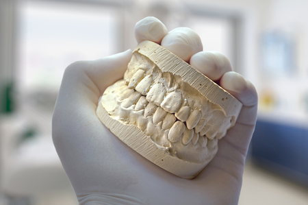esthetics: hand show model teeth