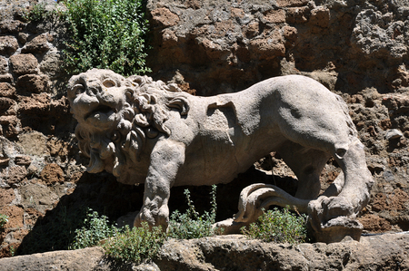 close up of the lion statue, Ruins of Antica Monterano, Italy