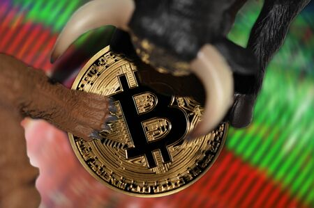 bitcoin bearish and bullish stock market trends conceptual illustration Фото со стока