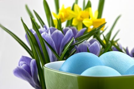 traditional easter eggs in cup with crocuses and daffodils behind photo