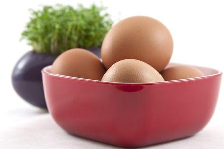 fresh eggs with fresh cress on white Stock Photo - 6627563