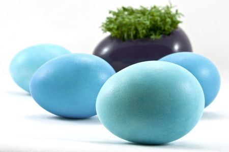 blue easter eggs with fresh cress photo