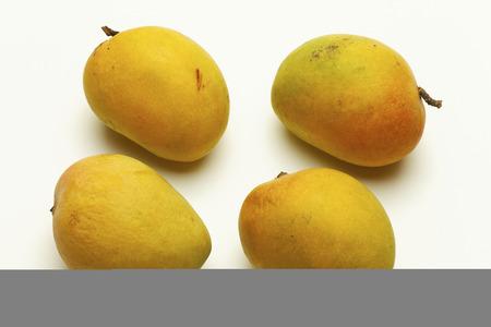 maharashtra: Alphonso mango from Maharashtra India. Stock Photo
