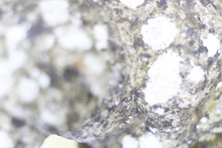 depth of field: Background of stone with shallow depth of field