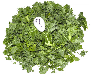 Leaves of fresh kale on white background with question marks egg.