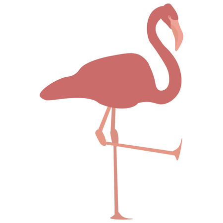 Vector image of a pink flamingo standing on one leg with the other leg up in the air. Each body part is on a separate layer. Illustration