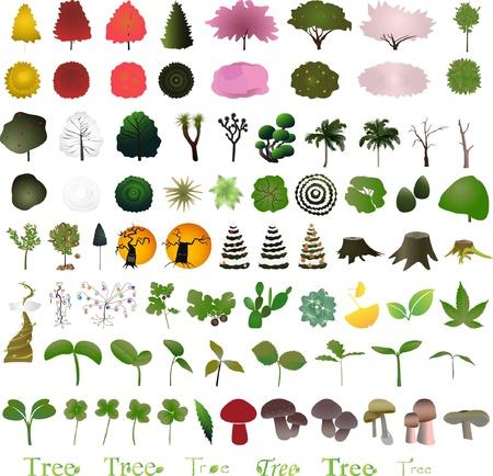 아이콘 및 로고에 대한 백 나무 그래픽 디자인 요소