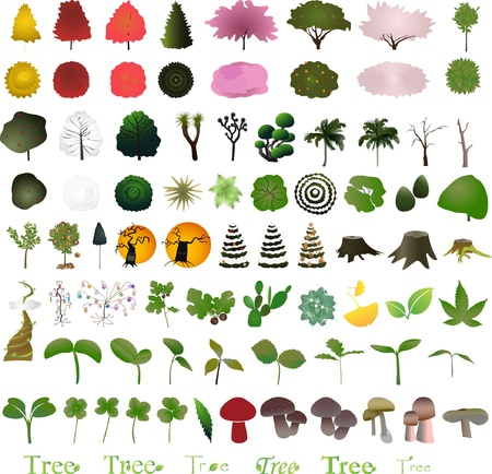 One hundred tree graphic design elements for icons and logos