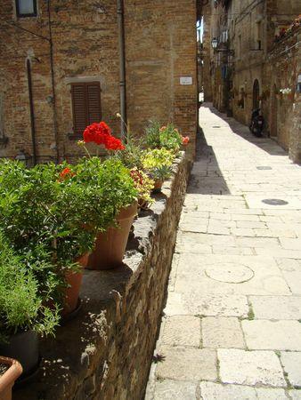 herbage:   Mediterranean strret Stock Photo