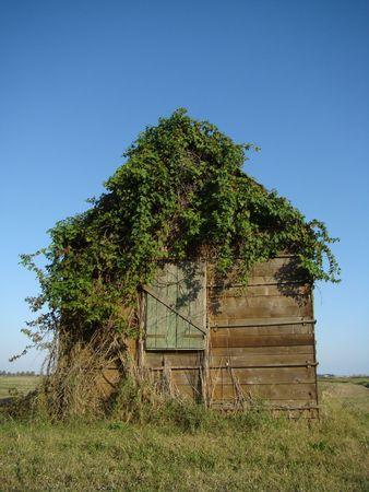 maisonette: hut Stock Photo