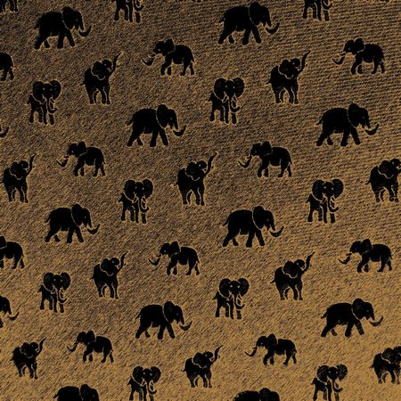 safari theme                          photo