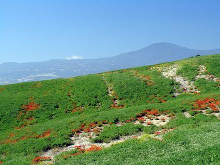 DOrcia Valley, UNESCO world heritage site                 photo