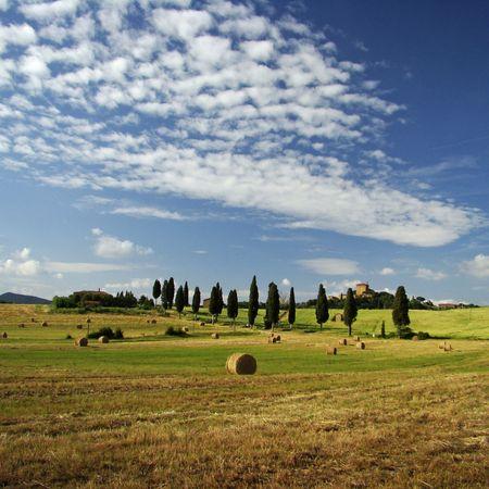 beauty of tuscan landscape                                photo