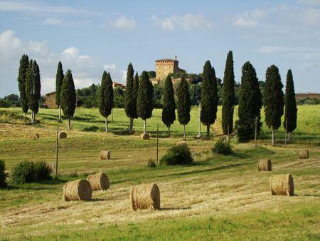 Bella Toscana                                photo