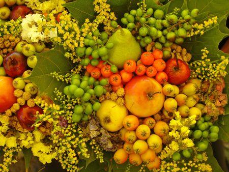 autumnal colors Stock Photo - 5547572