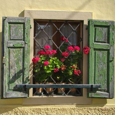 flowery: ventana con geranios y postigos verdes, Italia Foto de archivo