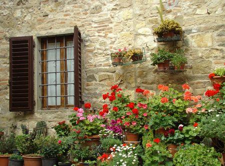 geranium color:                   flowery window, italy