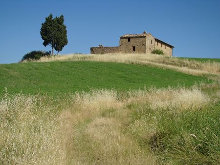 tuscan scenery                                photo
