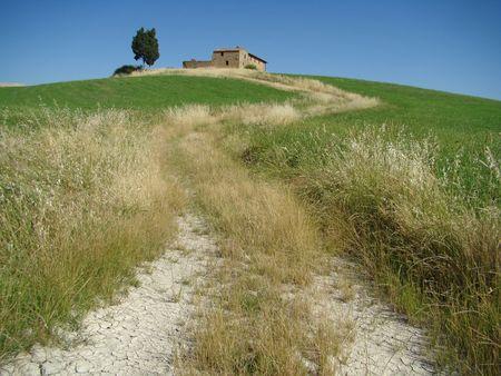 tuscan farmland in Val dOrcia valley, unesco heritage list photo