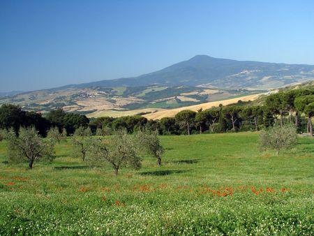 idyll: Tuscan idyll,mount Amiata and farmland in spring