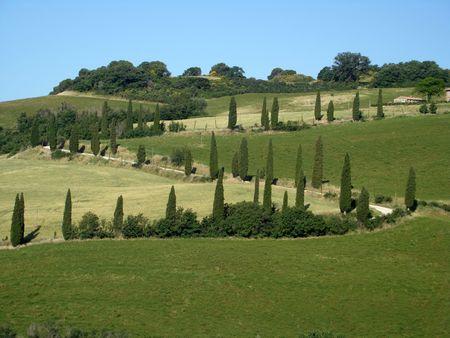 italian harmony, Tuscany, Orcia Valley                                photo