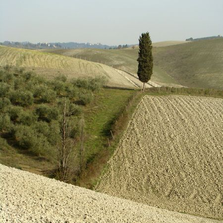 harmony and beauty of tuscan landscape                          photo