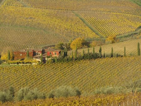 beautiful tuscan farmhouse surrounded by vineyards, Chianti, Italy                            photo