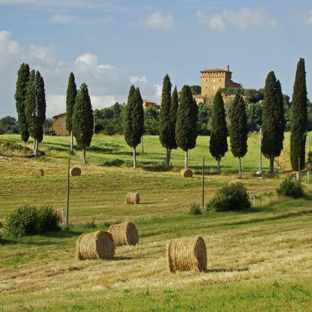 Idyllic Tuscany, Italy Stock Photo - 6157793
