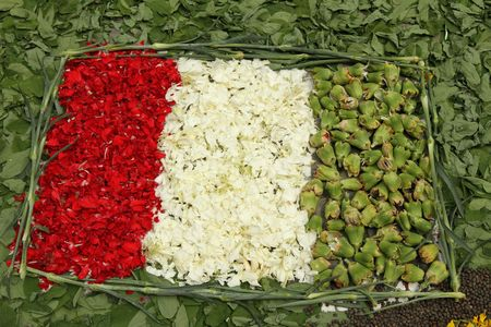 talian: talian flag made of flowers, detail from flower carpet during festival in Scarperia, Tuscany, Italy