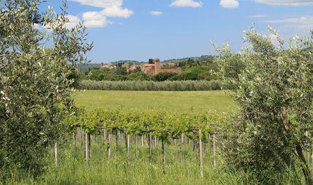 italian idyll, Tuscany, Sovana Stock Photo - 7621140