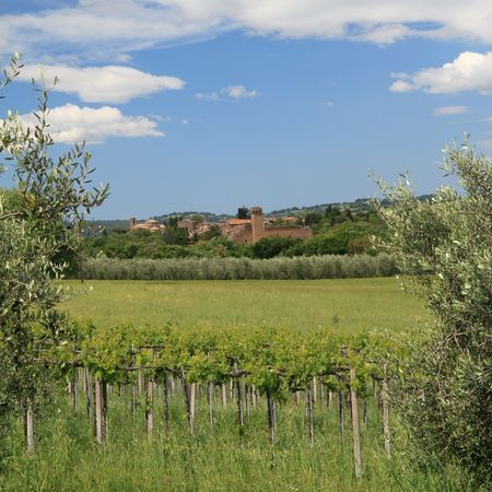 tuscan countryside, Sovana village, Italy photo