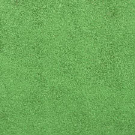 green leather sample photo
