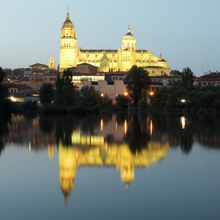 Cathedral of Salamanca reflected in river by night, Spain