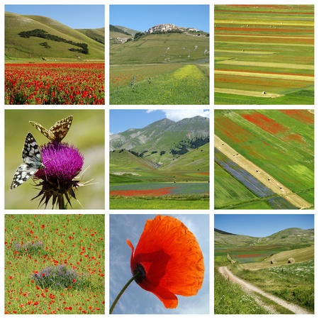 collage : beauty of colors and design of Nature, Castelluccio di Norcia village in Sibillini mountains National Park, and famous plateau Piano Grande, Italy photo