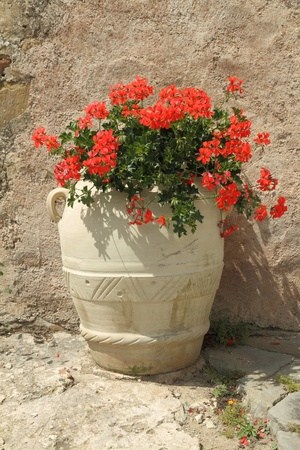 terracotta: retro style terracotta pot wit red geranium, Italy