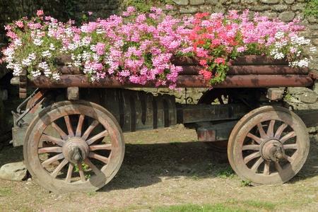 carreta madera: carro de madera lleno de flores de color rosa, rojo y blanco