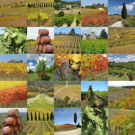 collage with tuscan vineyards, Italy, Europe photo