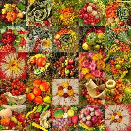 Vogelbeere: Collage mit herbstlichen Gemüse-Kompositionen Lizenzfreie Bilder