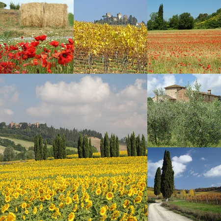toscana: collage with beautiful tuscan countryside, Italy,Europe