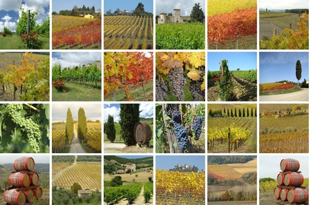 toscana: collage with beautiful landscape of vineyards in Chianti region,Tuscany, Italy, Europe