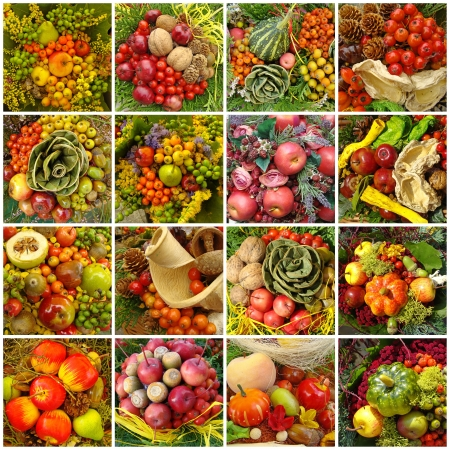 thanksgiving: autumnal harvest collage