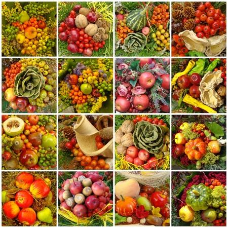 cuerno de la abundancia: collage de la cosecha de oto�o