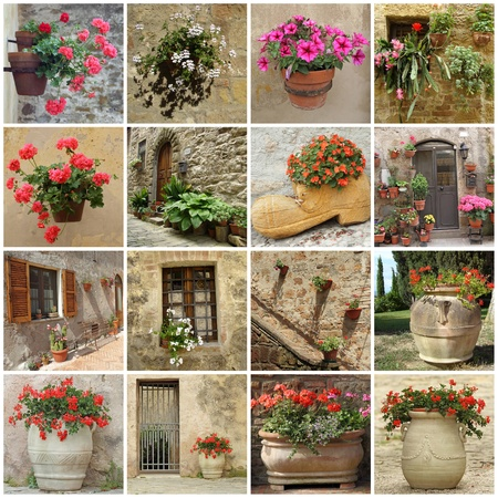 geranium: gardening collage of flowerpots on wall,  terrace, backyards and in front of the doors, Tuscany, Italy.